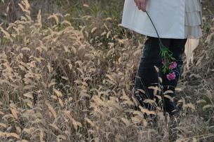 野原でアザミの造花を持った女性の腰から下の写真素材 [FYI00057561]