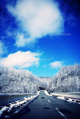 冬の道の素材 [FYI00057722]