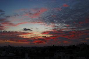 Morning glow 012510の写真素材 [FYI00057757]