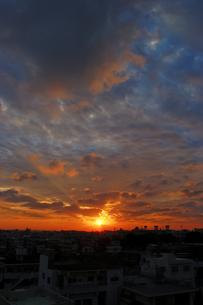 Morning glow 012510の写真素材 [FYI00057765]