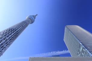 東京スカイツリータウンが見える風景の写真素材 [FYI00058009]