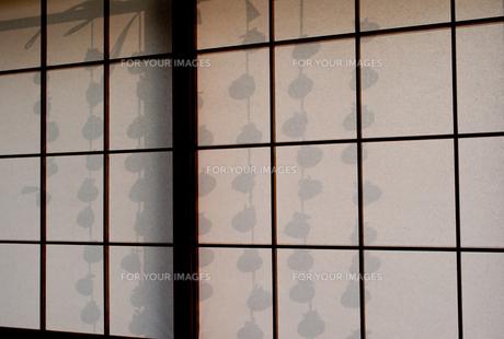 障子に干し柿の影の写真素材 [FYI00058078]