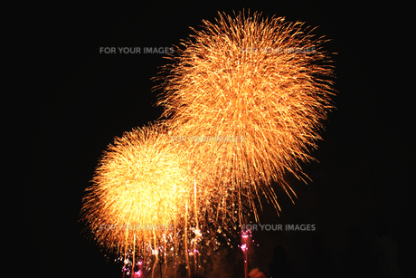 足立の花火の素材 [FYI00058177]