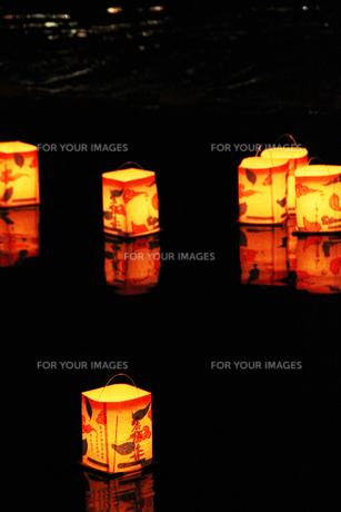 灯篭流しの写真素材 [FYI00058220]