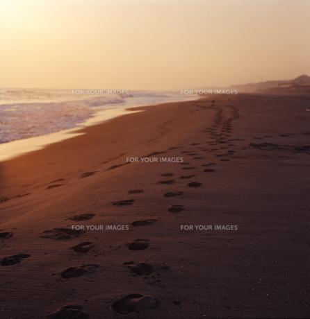 砂丘と足跡の素材 [FYI00058429]