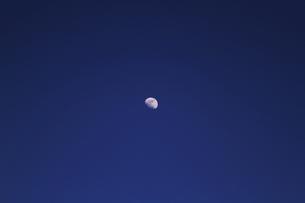 月明かり(ムーンライト)の写真素材 [FYI00058594]