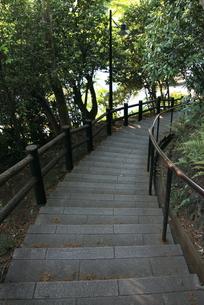 階段の写真素材 [FYI00059373]