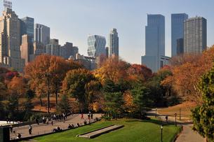 秋のセントラルパークの写真素材 [FYI00059591]