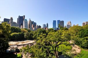 ニューヨーク セントラルパークの写真素材 [FYI00059774]