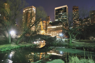 夜のセントラルパークの写真素材 [FYI00059784]