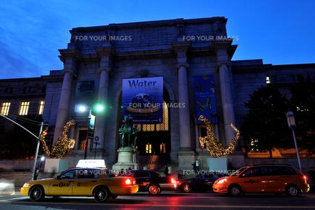 クリスマスのニューヨーク自然史博物館の写真素材 [FYI00060413]