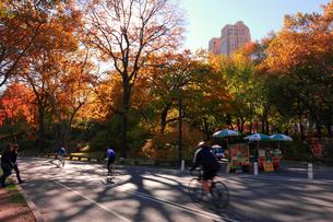 秋のセントラルパークでサイクリングの写真素材 [FYI00060534]