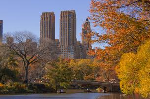 秋のセントラルパークの写真素材 [FYI00060552]