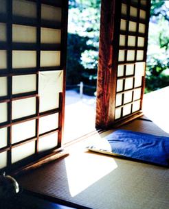日本座敷の木漏れ日の写真素材 [FYI00060719]