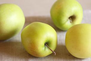 サンむつりんご・横の写真素材 [FYI00060981]