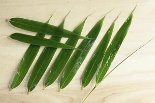 濡らした笹の葉の写真素材 [FYI00061128]