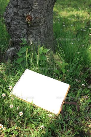 公園の木陰のスケッチブックの写真素材 [FYI00061152]