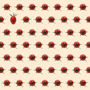 プチトマトの背景素材の素材 [FYI00061277]