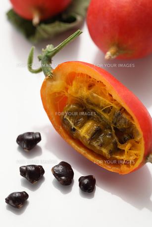 カラス瓜の実と金運の種子の写真素材 [FYI00061453]