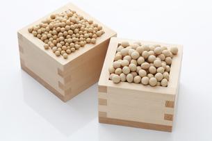小粒の大豆と中粒大豆の素材 [FYI00061525]