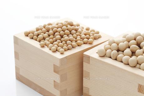 粒サイズの違う品種の大豆の素材 [FYI00061531]