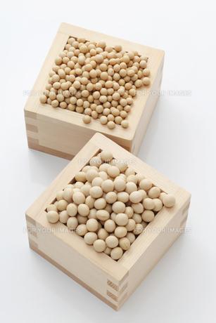 小粒品種の大豆と中・大粒の大豆の素材 [FYI00061535]