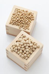 小粒品種の大豆と中・大粒の大豆の写真素材 [FYI00061535]