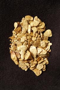 日本産の砂金の写真素材 [FYI00061549]