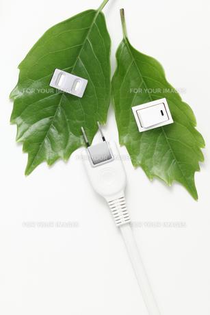 エコ、節電、クリーンエネルギーイメージの写真素材 [FYI00061569]