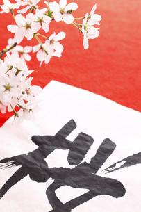 新春のイメージの素材 [FYI00061600]