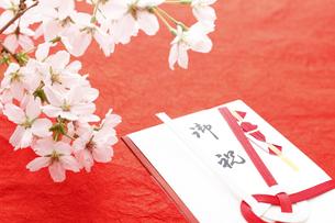 桜の花とご祝儀袋の写真素材 [FYI00061605]