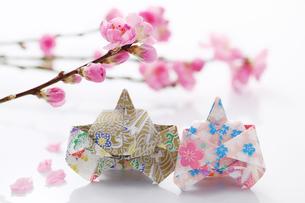 折り紙のひな人形と花桃の写真素材 [FYI00061614]