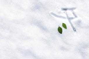 雪上に書いた冬の素材 [FYI00061622]
