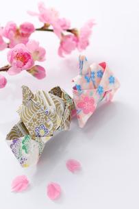 折り紙のひな人形と花桃の写真素材 [FYI00061628]