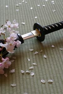 抜かれた日本刀の写真素材 [FYI00061684]