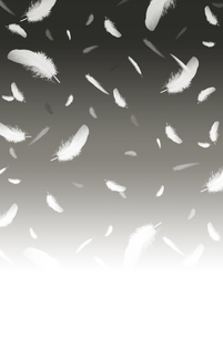 舞い散る羽毛 白黒の写真素材 [FYI00061888]