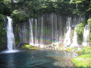 白糸の滝 静岡県の写真素材 [FYI00061890]