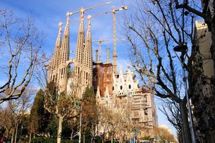 スペイン バルセロナ サグラダ・ファミリアの写真素材 [FYI00062990]