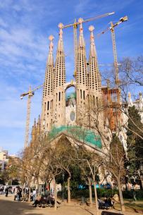 スペイン バルセロナ サグラダ・ファミリアの写真素材 [FYI00062992]