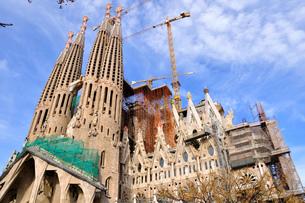 スペイン バルセロナ サグラダ・ファミリアの写真素材 [FYI00062995]