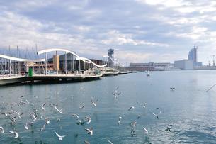 スペイン バルセロナ港の写真素材 [FYI00062996]