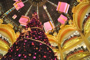 フランス パリ ギャラリー・ラファイエットのクリスマスツリーの素材 [FYI00063496]