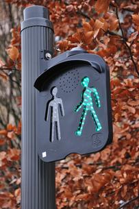 フランスの歩行者用信号の素材 [FYI00063511]