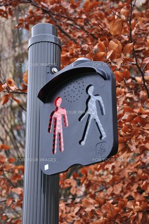 フランスの歩行者用信号の素材 [FYI00063513]