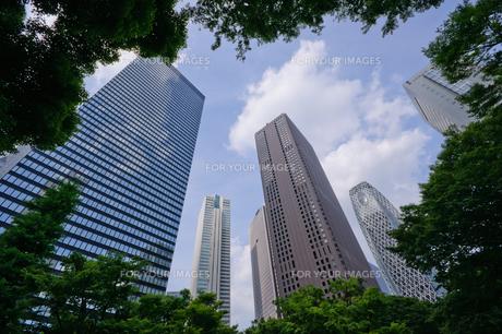 東京 西新宿の超高層ビル群の素材 [FYI00064649]