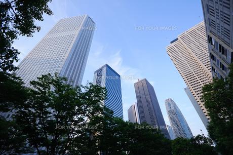 東京 西新宿の超高層ビル群の素材 [FYI00064668]