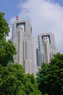 東京都庁第一本庁舎の素材 [FYI00064670]
