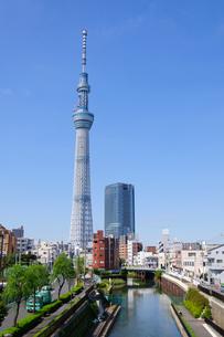 東京スカイツリーの素材 [FYI00064848]