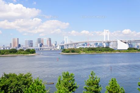 東京 お台場海浜公園からの眺めの素材 [FYI00064858]