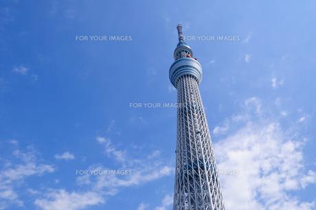 東京スカイツリーの素材 [FYI00064872]